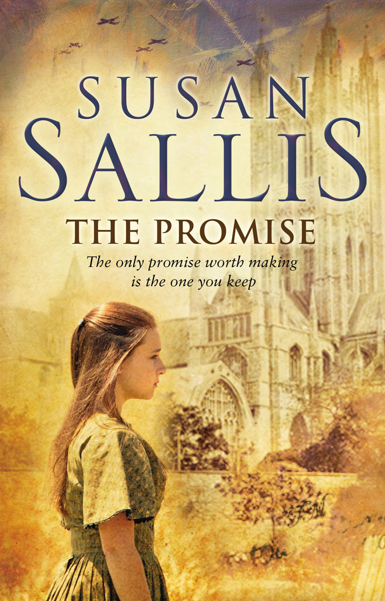 The Promise gap ga020ewvdp16
