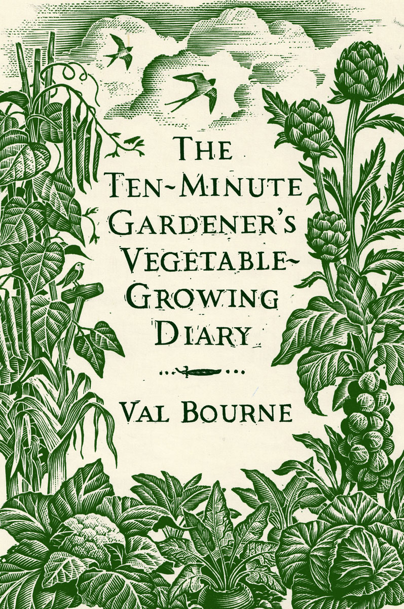 The Ten-Minute Gardener's Vegetable-Growing Diary creative woven fruit and vegetable basket