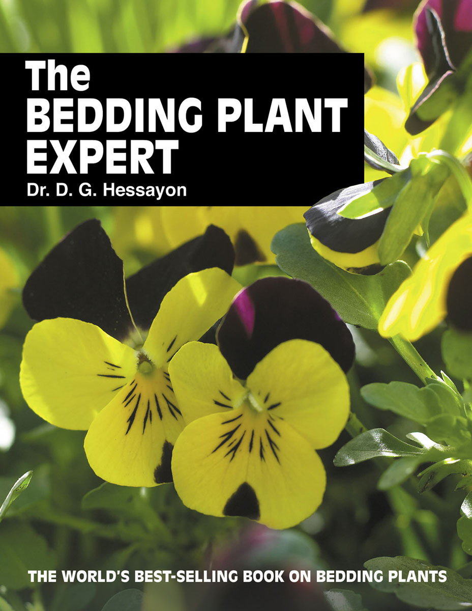 The Bedding Plant Expert the hanging garden