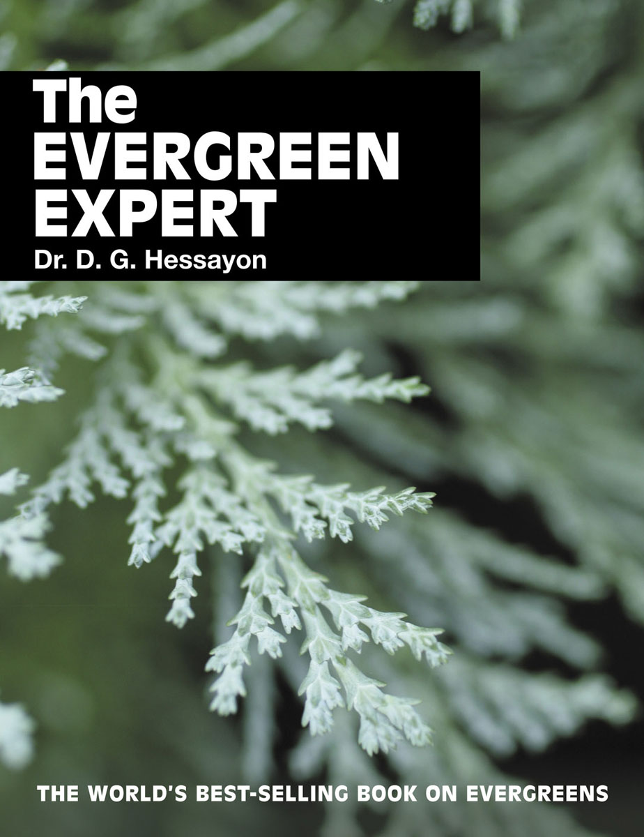 The Evergreen Expert huge right