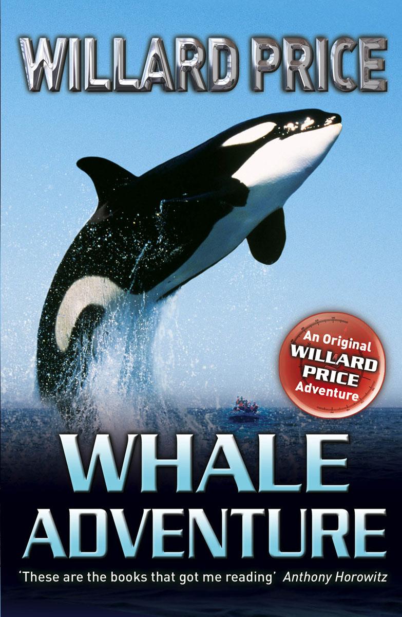 Whale Adventure whale adventure