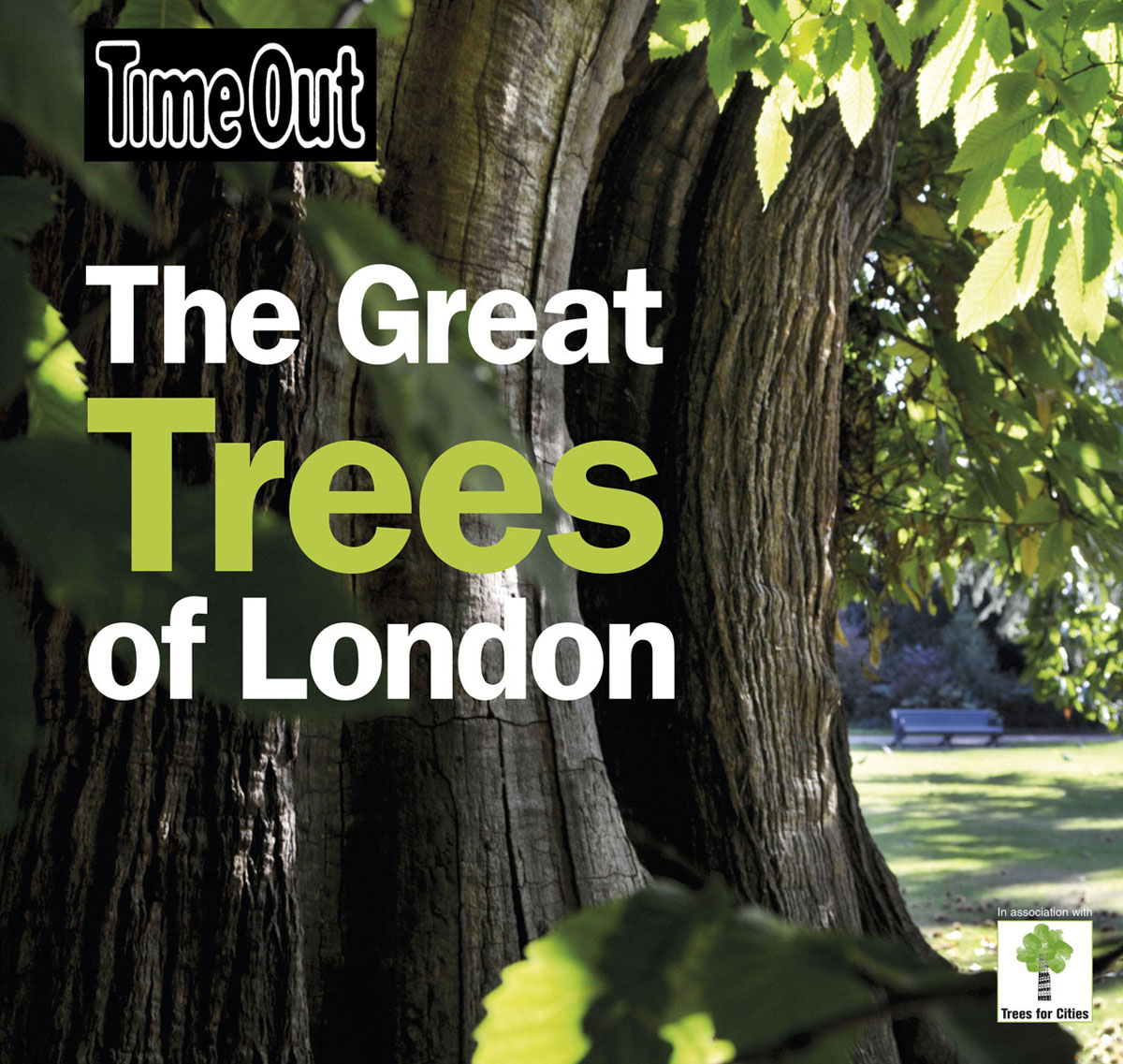 Great Trees of London the trees trees the garden of jane delawney lp