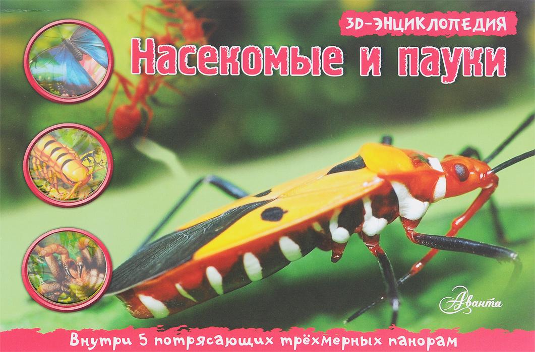 Насекомые и пауки. Книжка-панорамка