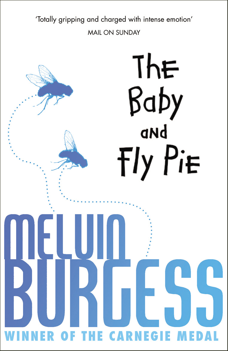 The Baby And Fly Pie the lonely polygamist – a novel