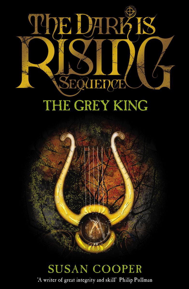 Купить The Grey King