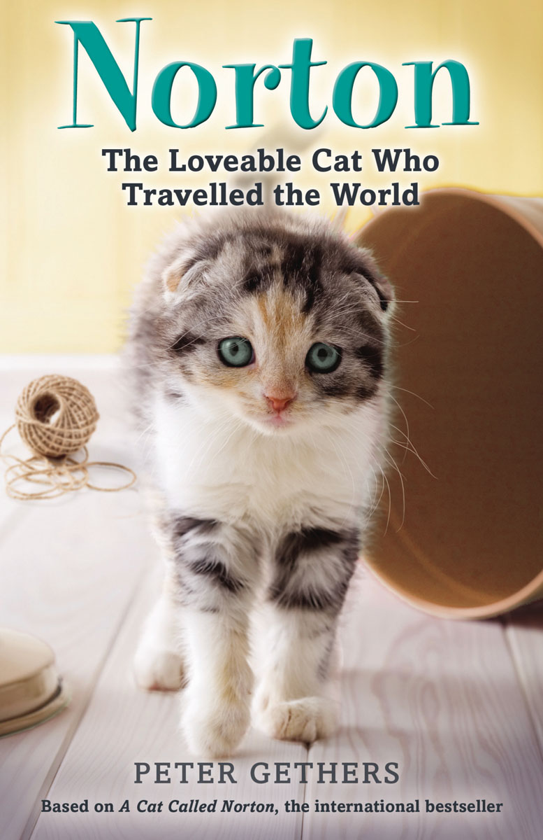 Norton, The Loveable Cat Who Travelled the World anthony burgess a clockwork orange – norton critical edition