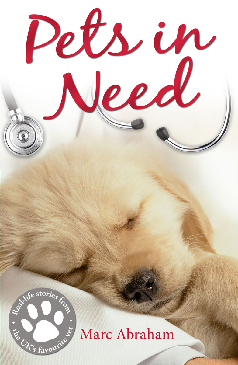 Pets in Need need for speed rivals