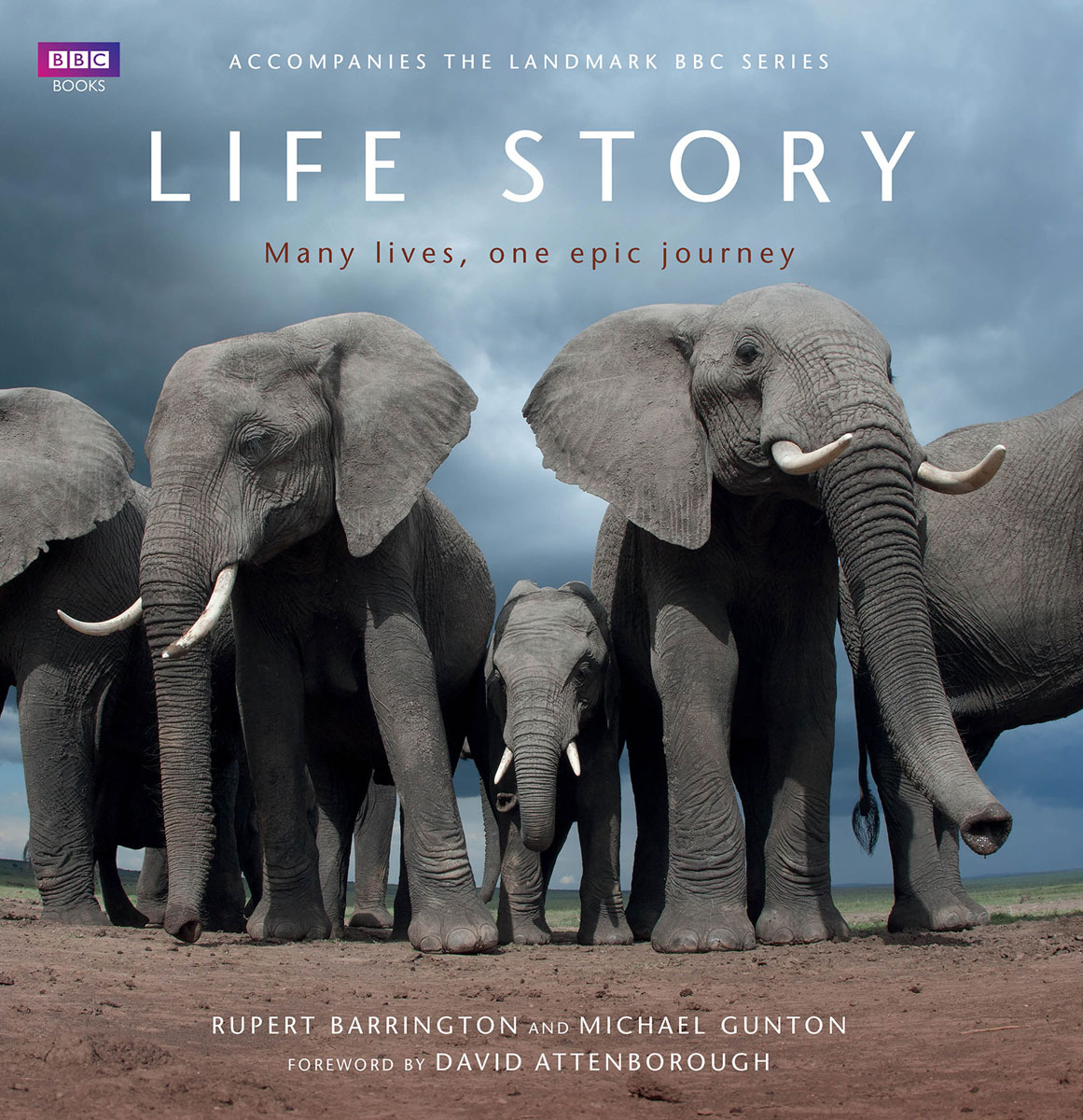 Life Story: Many Lives one Epic Journey rollason j barack obama the story of one man s journey to the white house level 2 сd