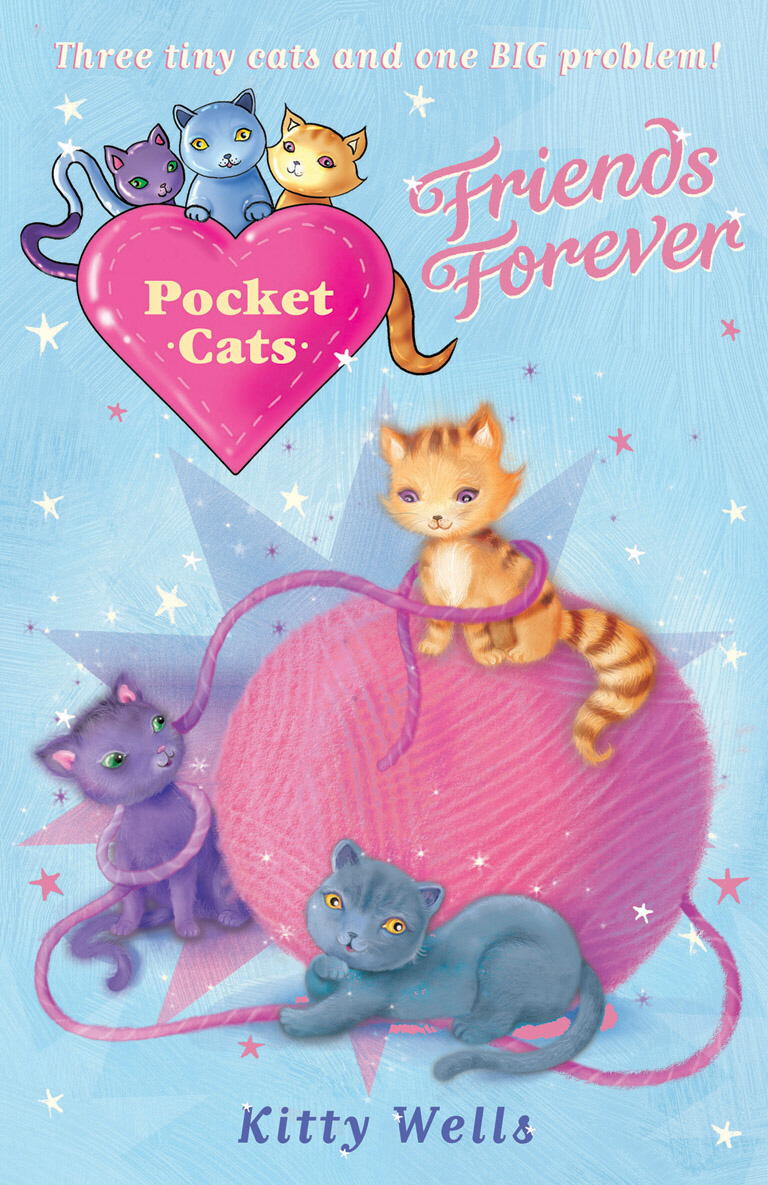 Pocket Cats: Friends Forever платье maddy