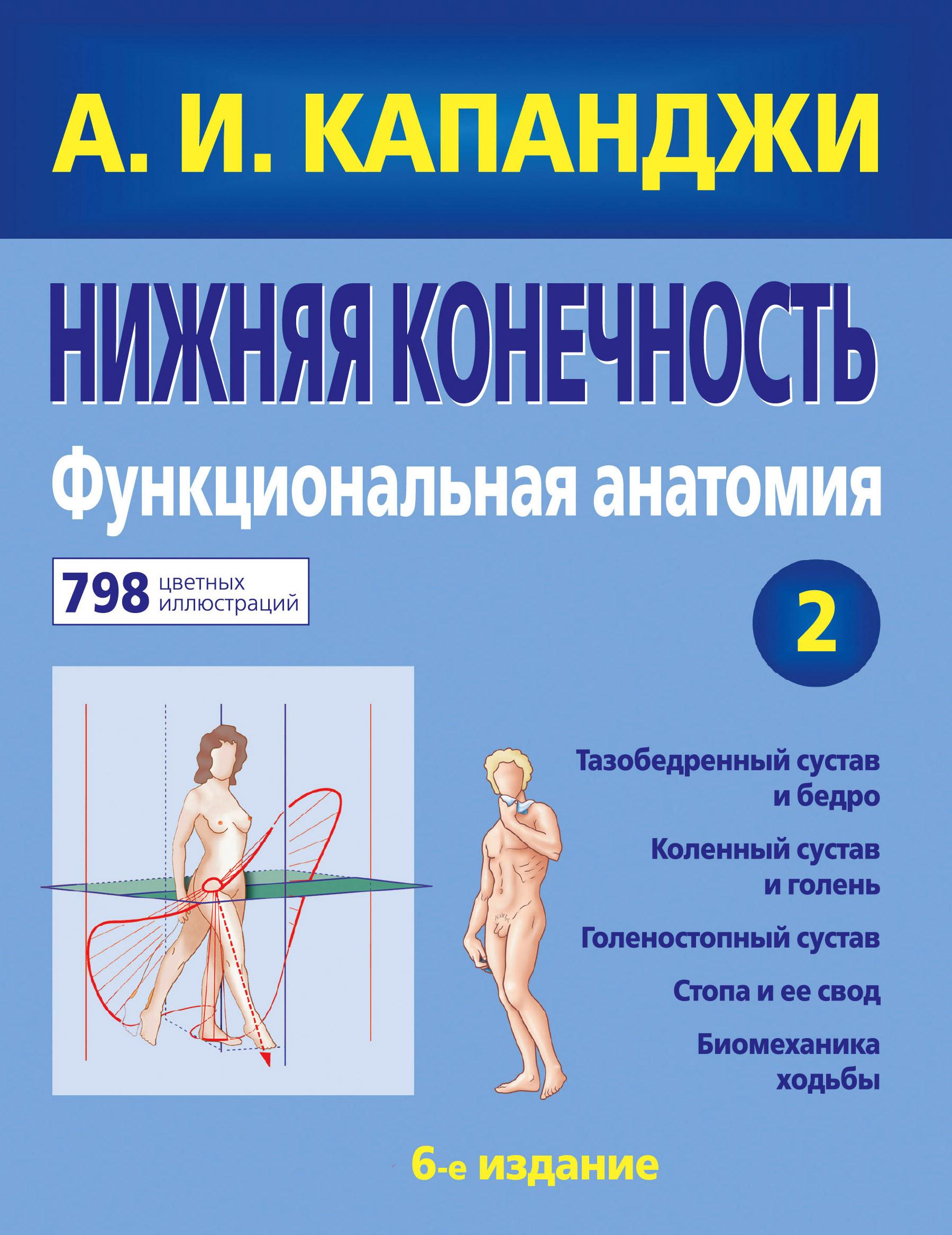 Капанджи А.И. Нижняя конечность. Функциональная анатомия. Том 2 книги эксмо нижняя конечность функциональная анатомия