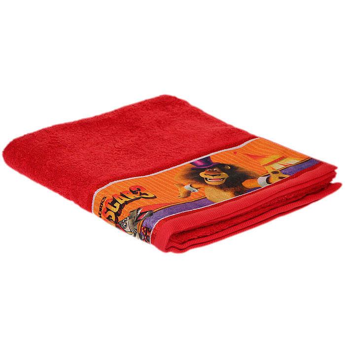 Полотенце махровое Непоседа Мадагаскар , цвет: красный, 60 х 130 см 181270181270Полотенце Непоседа Мадагаскар выполнено из натуральной махровой ткани. Изделие украшено изображением главных героев мультфильма Мадагаскар 3. Мягкое и уютное, оно прекрасно впитывает влагу и легко стирается. Такое полотенце подарит массу положительных эмоций и обязательно понравится вашему ребенку.Рекомендации по уходу: - использовать моющие средства для цветного белья, - щадящая машинная и ручная стирка при температуре 40°С, - щадящие отжим и сушка в барабане, - не рекомендуется отбеливать, - химчистка запрещена, - гладить при температуре до 200°С.