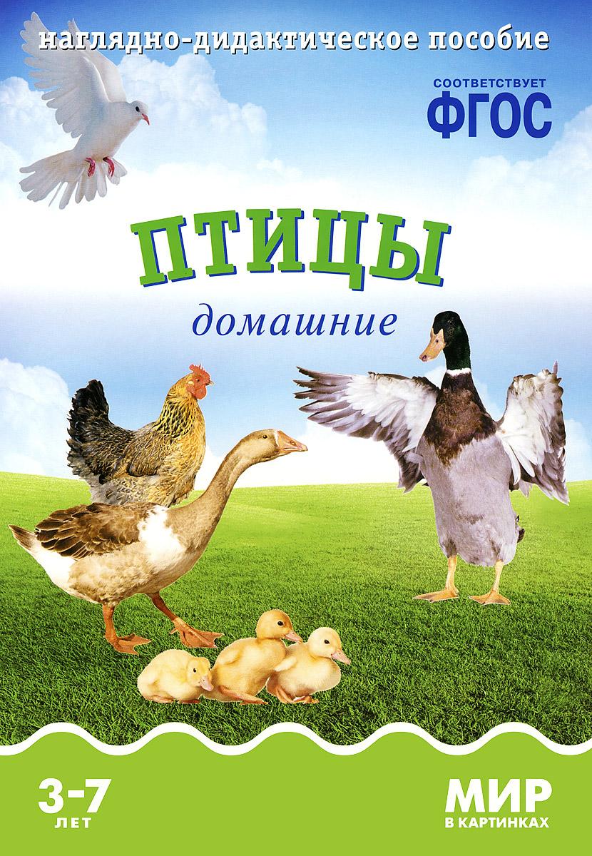 Т. Минишева Птицы домашние. Наглядно-дидактическое пособие. Для детей 3-7 лет (набор карточек)