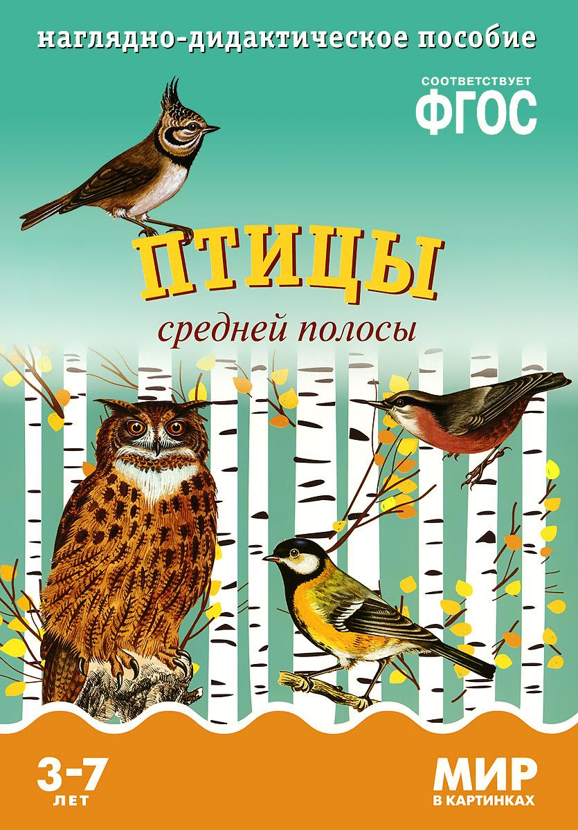 Птицы средней полосы. Наглядно-дидактическое пособие. Для детей 3-7 лет (набор карточек)