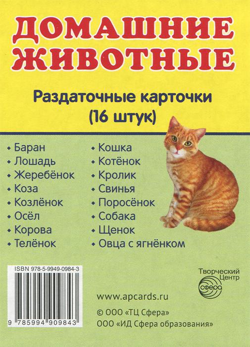 Домашние животные. Раздаточные карточки