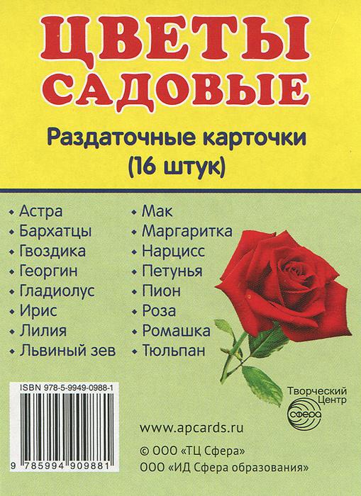 Цветы садовые.  Раздаточные карточки