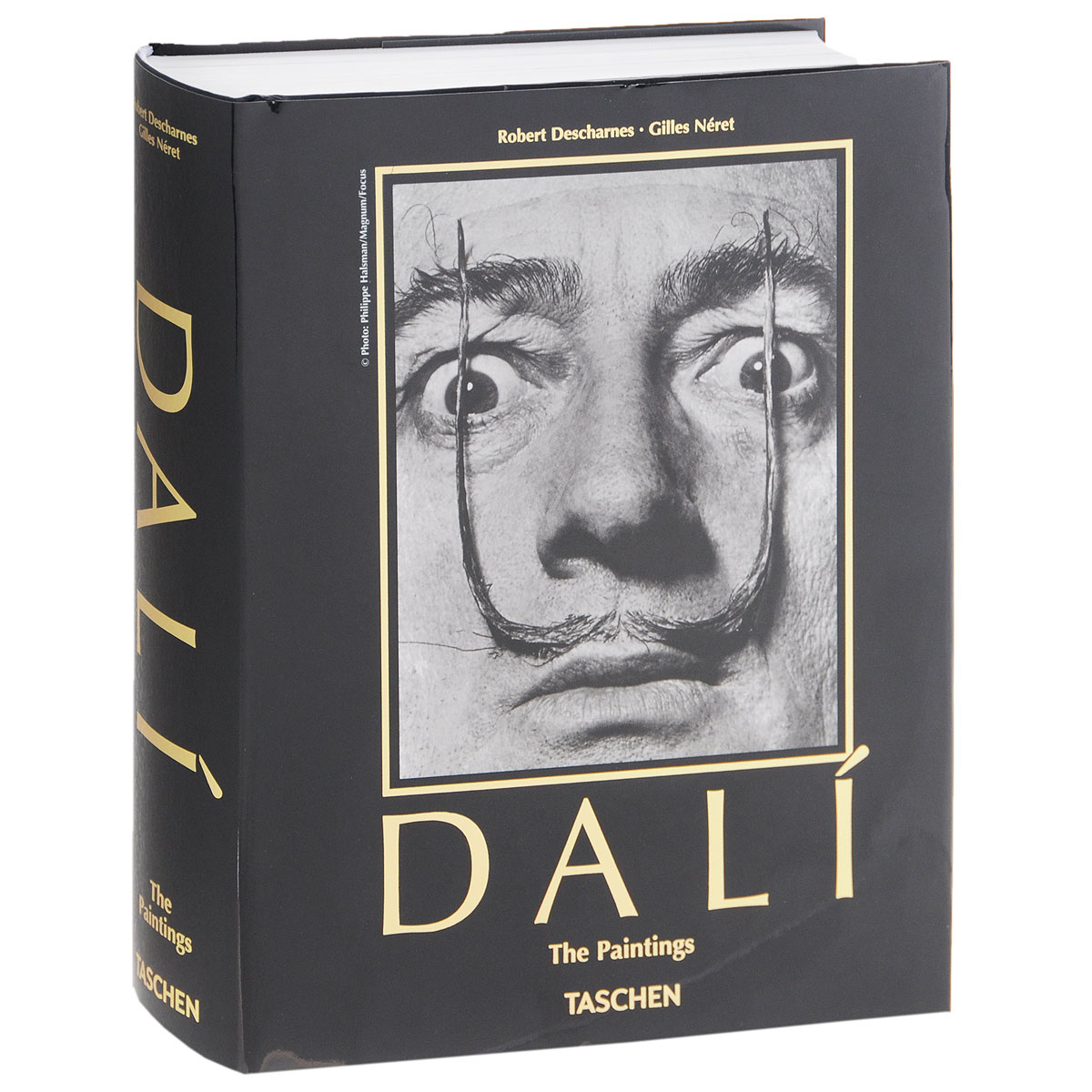 Dali: The Paintings burning guitar pattern unframed wall art canvas paintings