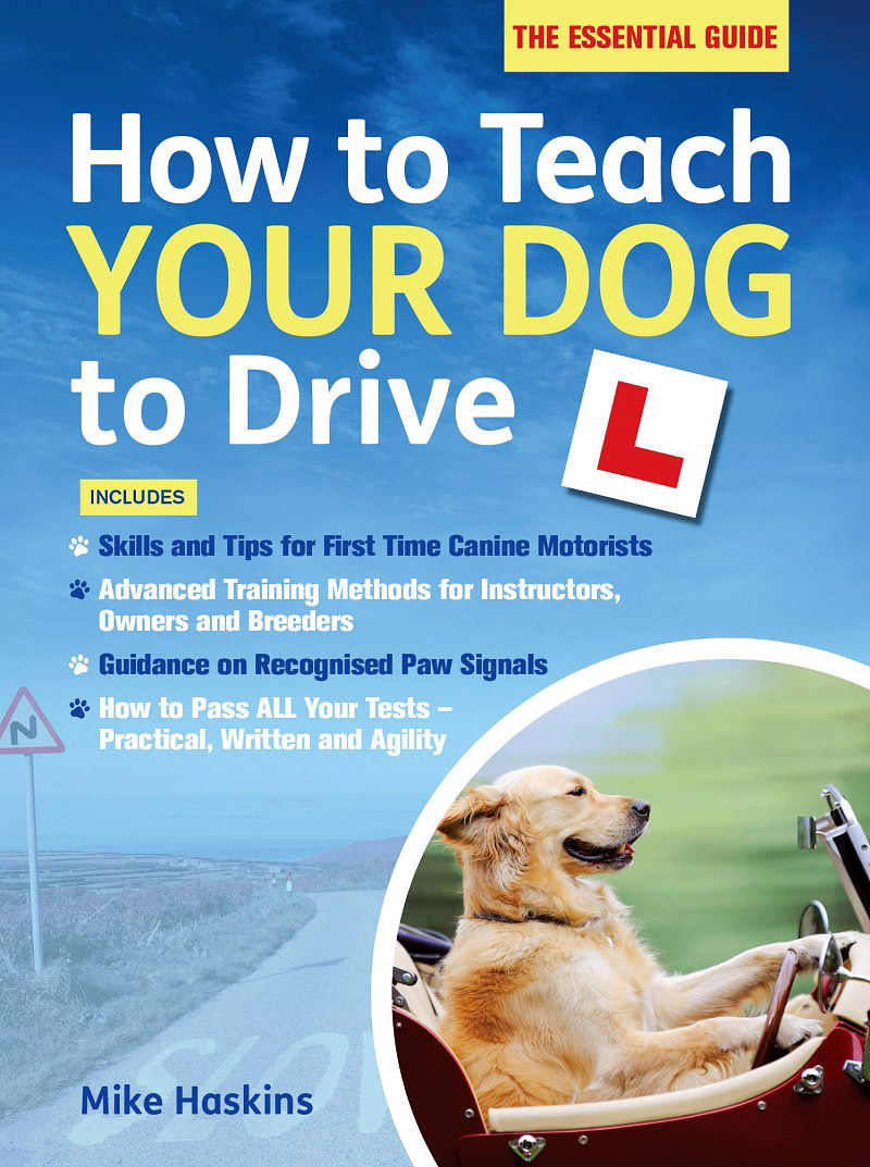 How to Teach Your Dog to Drive how to teach pronunciation cd