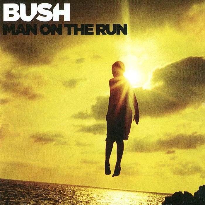 Bush Bush. Man of the Run lm8uu 8mm linear ball bearing bush steel for cnc router mill machine
