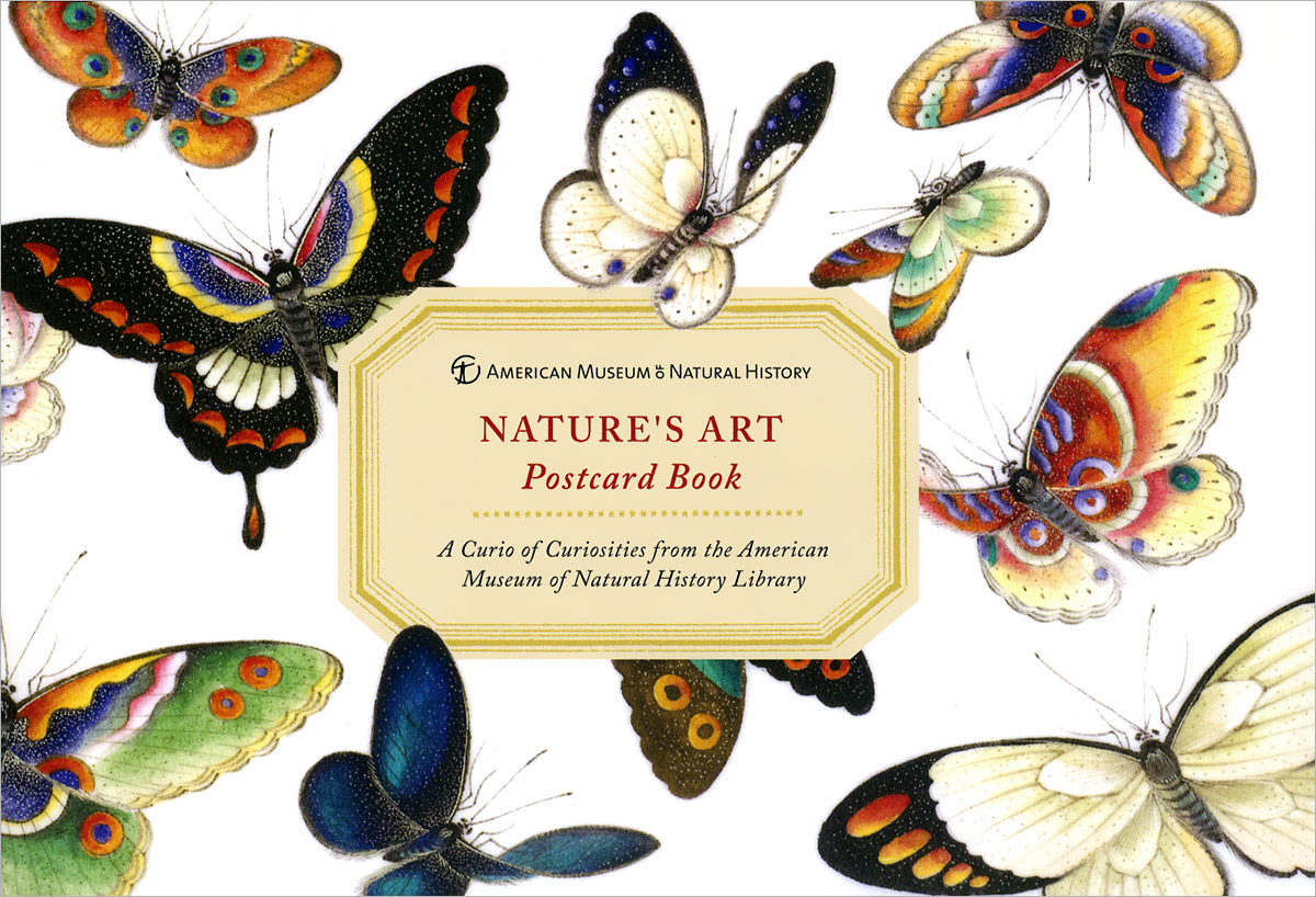 AMNH Nature's Art Postcard Book the museum of oriental art moscow