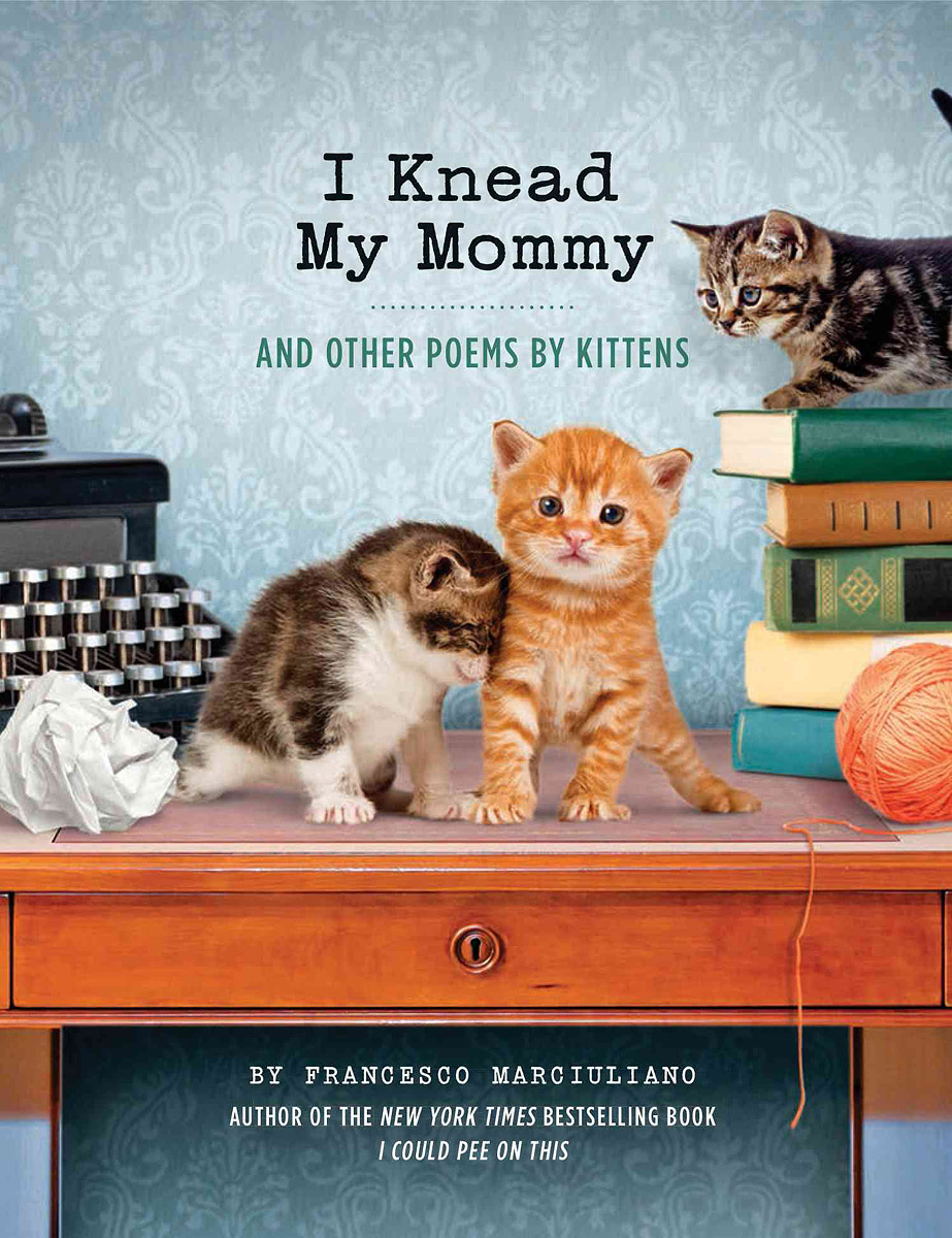 I Knead My Mommy: And Other Poems by Kittens i found you