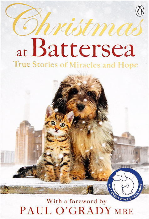Christmas at Battersea: True Stories of Miracles and Hope 30pcs in one postcard take a walk on the go dubai arab emirates christmas postcards greeting birthday message cards 10 2x14 2cm