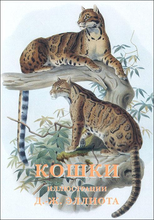 Кошки (набор из 15 открыток) рыбы набор из 15 открыток
