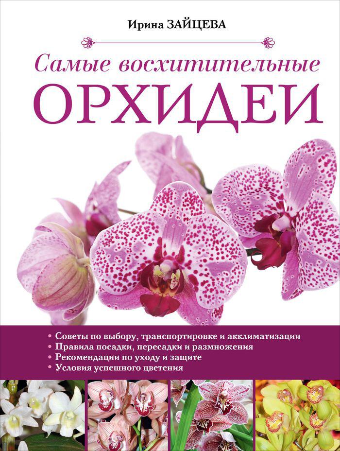 Ирина Зайцева Самые восхитительные орхидеи