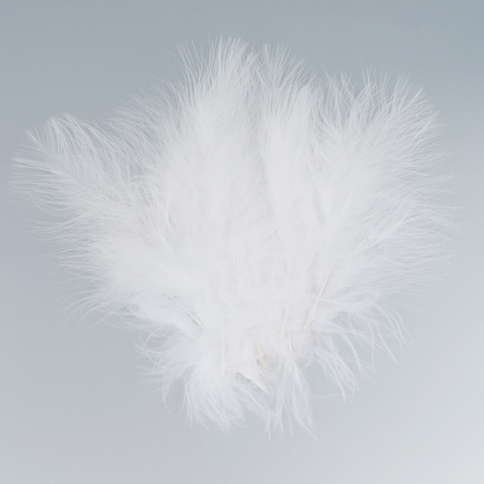 Перо декоративное Астра, индейка, цвет: белый (1), 20 шт7700236_1Декоративные перья Астра являются уникальным творением природы. Именно перья помогают понять настоящую красоту полета, легкость и девственную чистоту. Нередко на первый взгляд декоративные перья кажутся весьма хрупкими, но это вовсе не так, ведь они достаточно прочные и долговечные. Именно это свойство позволяет применять их в оформлении различных аксессуаров, бижутерии, украшениях. Более того, нередко декоративные перья используются для украшения праздников и торжеств, чтобы придать особую помпезность помещению.