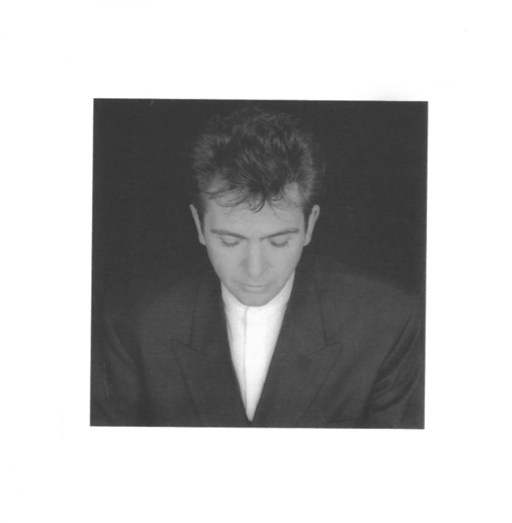 Питер Гэбриэл Peter Gabriel. Shaking The Tree: Sixteen Golden Greats питер гэбриэл peter gabriel peter gabriel 4 security lp