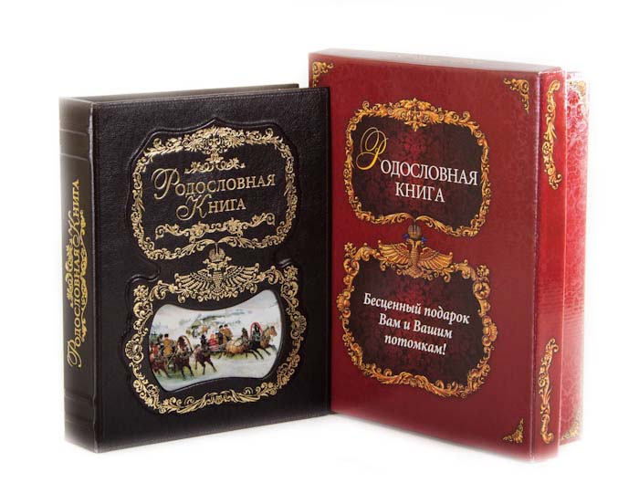 Родословная книга Город Подарков Тройка, 24,5 х 31,5 х 5 см