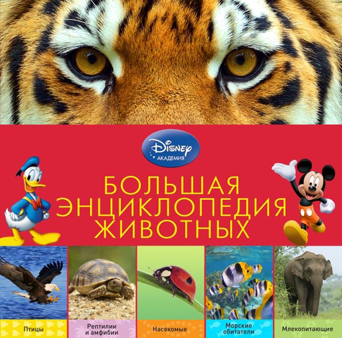 Большая энциклопедия животных бологова в моя большая книга о животных 1000 фотографий