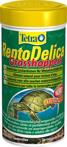 Корм для водных черепах Tetra Repto Delica Grasshopers, кузнечики, 28 г193901Корм Tetra ReptoDelica Grasshoppers - естественное лакомство для водных черепах - 100 % натуральный корм (высушенные на солнце кузнечики) для здорового питания, идеально подходящий этим питомцам. Поддерживает здоровое развитие костей и панциря у черепах. Кузнечики богаты протеинами, что обеспечивает оптимальный рост. Следует использовать в качестве дополнения к основному корму Tetra ReptoMin. Вес: 28 г. Товар сертифицирован.