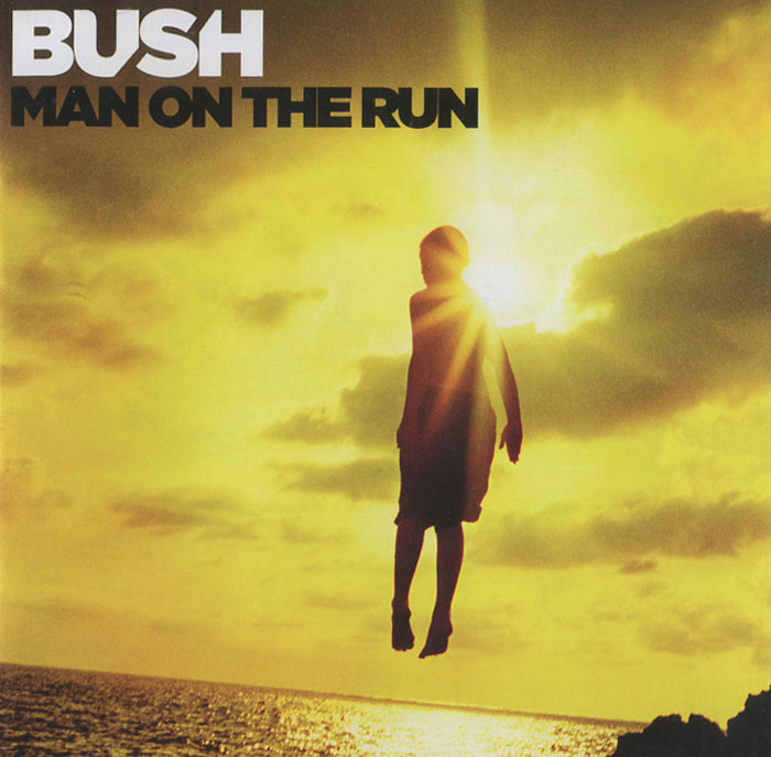 Bush Bush. Man On The Run lm8uu 8mm linear ball bearing bush steel for cnc router mill machine