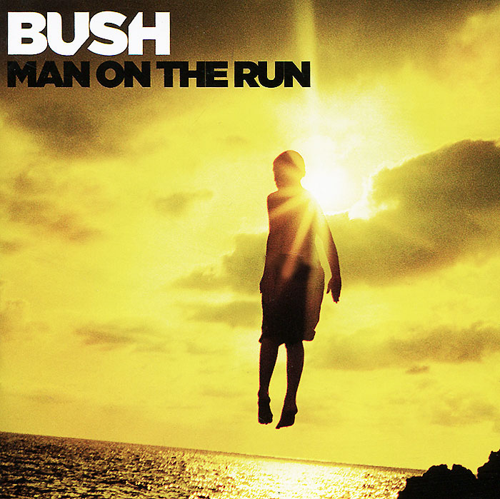 Bush Bush. Man On The Run. Deluxe lm8uu 8mm linear ball bearing bush steel for cnc router mill machine