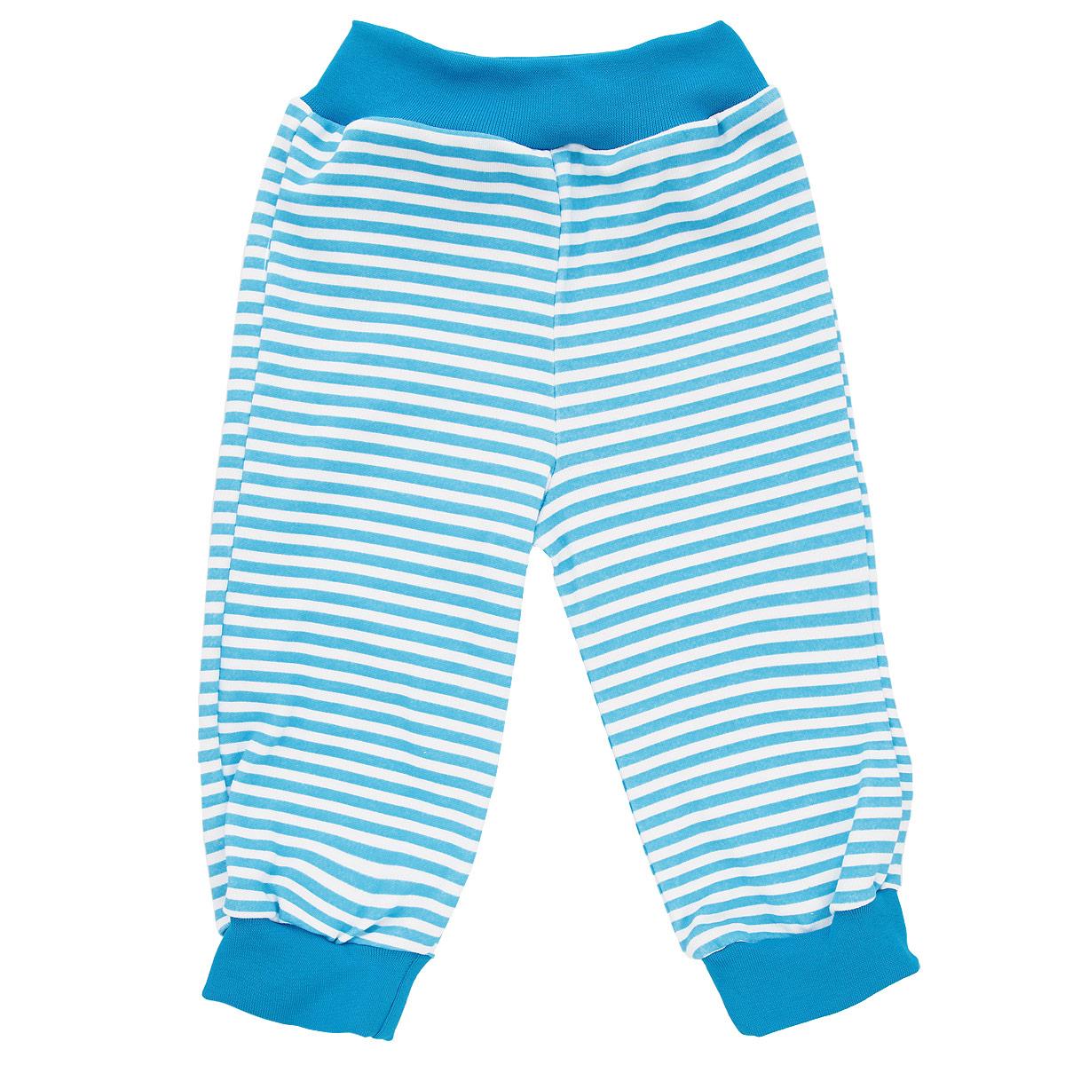 Штанишки на широком поясе для мальчика КотМарКот, цвет: голубой, белый. 3542. Размер 683542Удобные штанишки для мальчика КотМарКот на широком поясе послужат идеальным дополнением к гардеробу вашего малыша. Штанишки, изготовленные из натурального хлопка - интерлока, необычайно мягкие и легкие, не раздражают нежную кожу ребенка и хорошо вентилируются, а эластичные швы приятны телу младенца и не препятствуют его движениям. Штанишки благодаря мягкому эластичному поясу не сдавливают животик ребенка и не сползают, обеспечивая ему наибольший комфорт, идеально подходят для ношения с подгузником и без него. Снизу брючины дополнены широкими трикотажными манжетами, не пережимающими ножку. Оформлено изделие принтом в полоску.Штанишки очень удобный и практичный вид одежды для малышей, которые уже немного подросли. Отлично сочетаются с футболками, кофточками и боди.В таких штанишках вашему малышу будет уютно и комфортно!