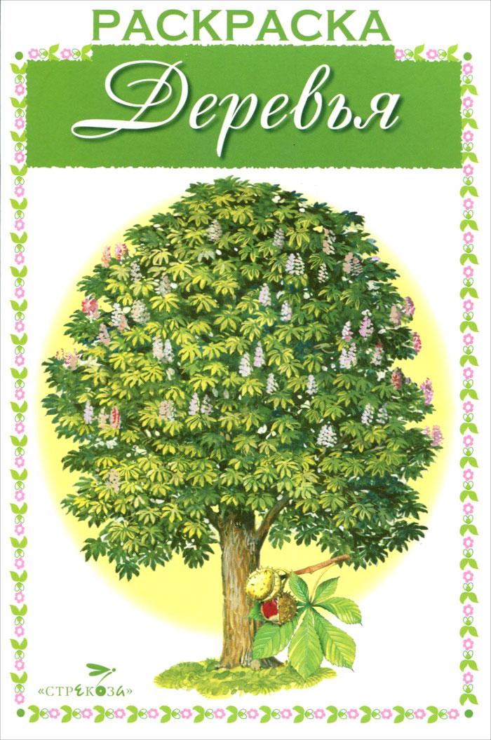 Деревья. Раскраска раскраски sentosphere акварельная раскраска деревья жизни