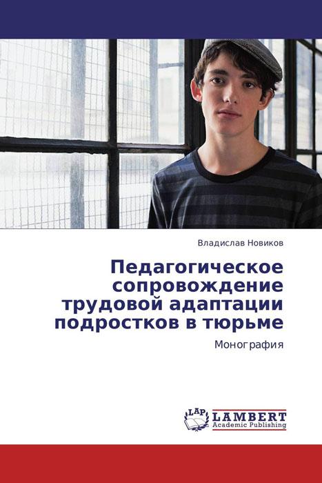 Педагогическое сопровождение трудовой адаптации подростков в тюрьме