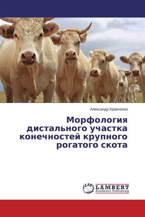 Морфология дистального участка конечностей крупного рогатого скота эпизоотологические особенности туберкулеза крупного рогатого скота