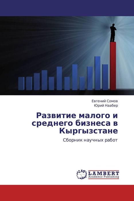 Развитие малого и среднего бизнеса в Кыргызстане