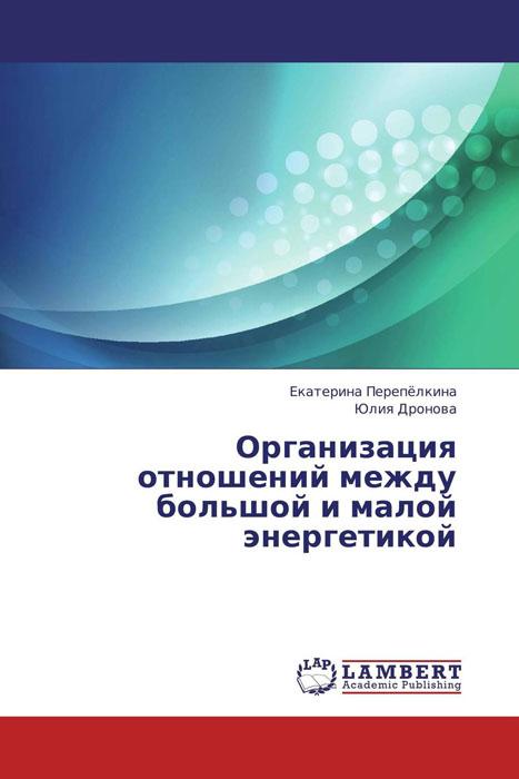 Организация отношений между большой и малой энергетикой организация отношений между большой и малой энергетикой