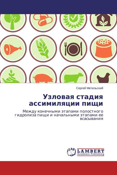 Узловая стадия ассимиляции пищи
