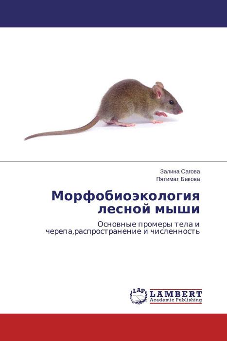 Морфобиоэкология лесной мыши лего лесной заповедник