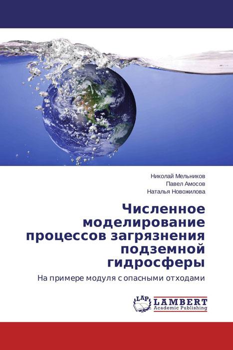 Численное моделирование процессов загрязнения подземной гидросферы