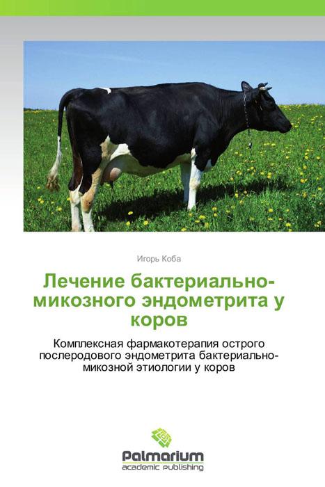 Лечение бактериально-микозного эндометрита у коров