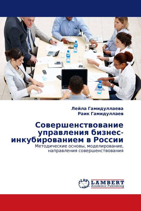 Совершенствование управления бизнес-инкубированием в России действующий бизнес в челябинске