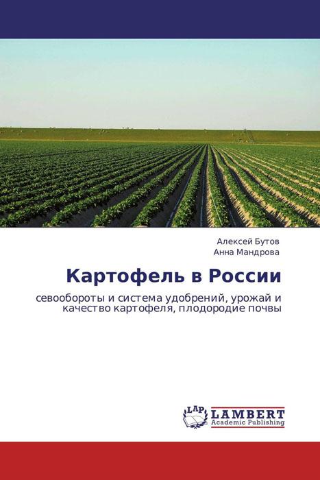 Картофель в России семена картофеля по беларуси в минске купить