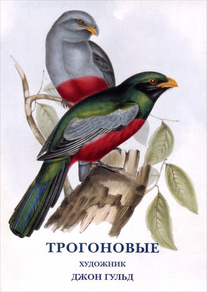Джон Гульд. Трогоновые (набор из 15 открыток) рыбы набор из 15 открыток