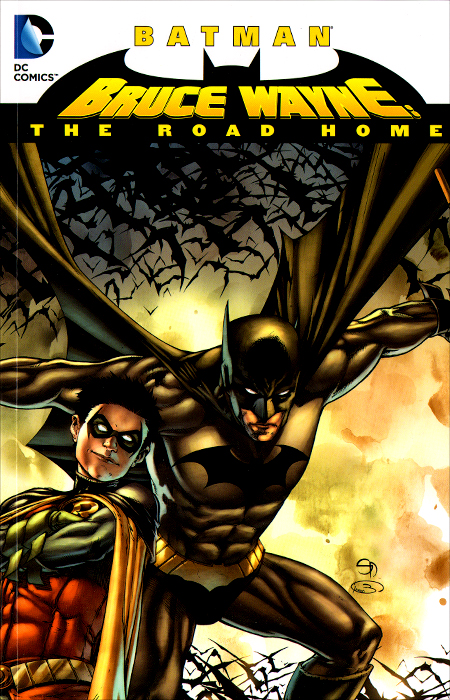Batman: Bruce Wayne - The Road Home bruce bridgeman the biology of behavior and mind