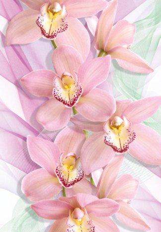 Фотообои Твоя Планета Премиум Орхидеи 194 х 136 см, 4 листа4607161056417Основа фотообоевТвоя Планета Премиум- импортная бумага высокого качества и повышенной плотности с нанесенным на неё цветным фотоизображением. Технология сборки фрагментов в единую картину довольно проста. Это наиболее распространенный вид обоев, позволяющих создать в квартире (комнате) определенное настроение и даже несколько расширить оптический объем. Фотообои пользуются популярностью потому, что они недорогие и при этом позволяют получить массу удовольствий при созерцании изображения.