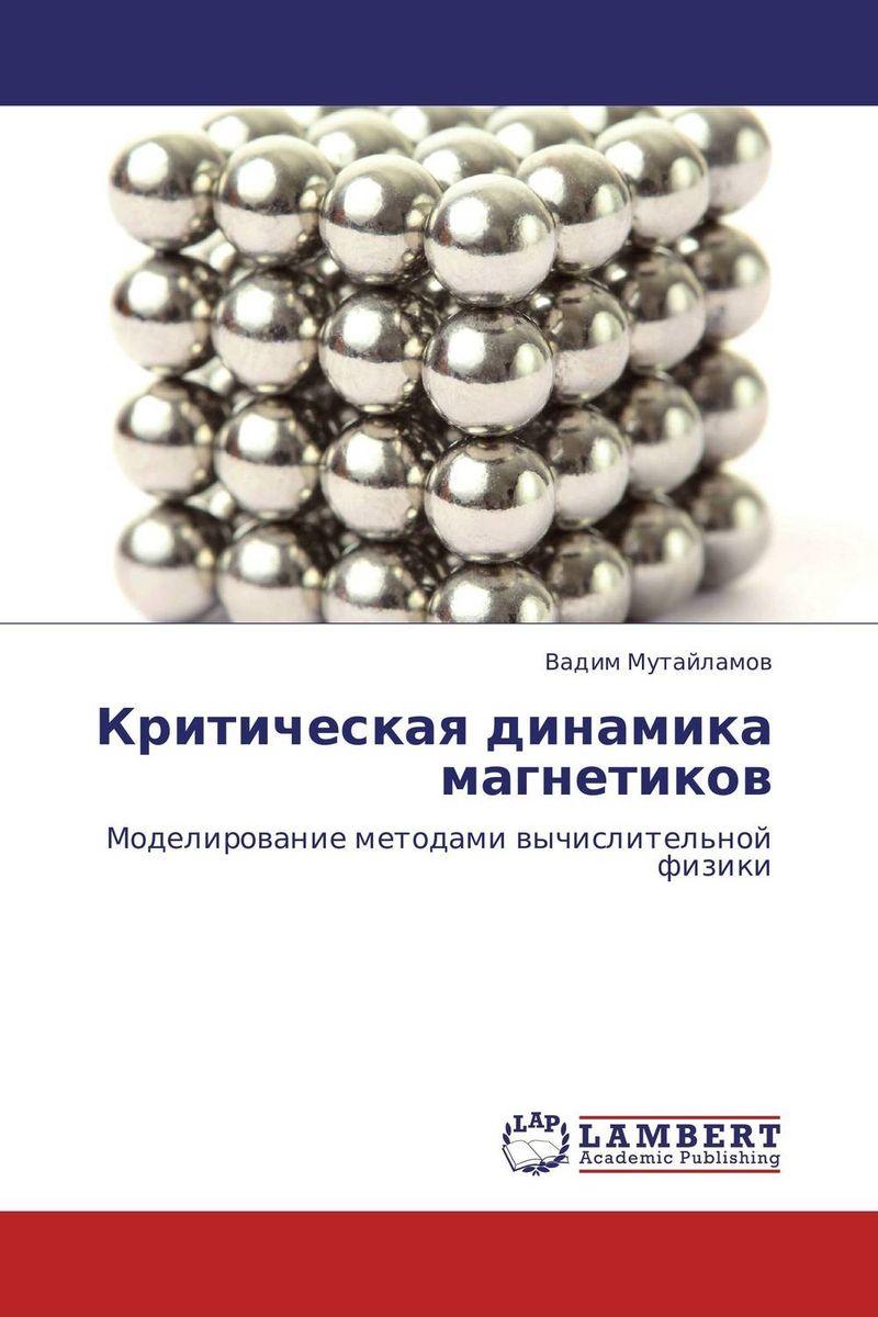 Критическая динамика магнетиков марина мамонова физика поверхности теоретические модели и экспериментальные методы